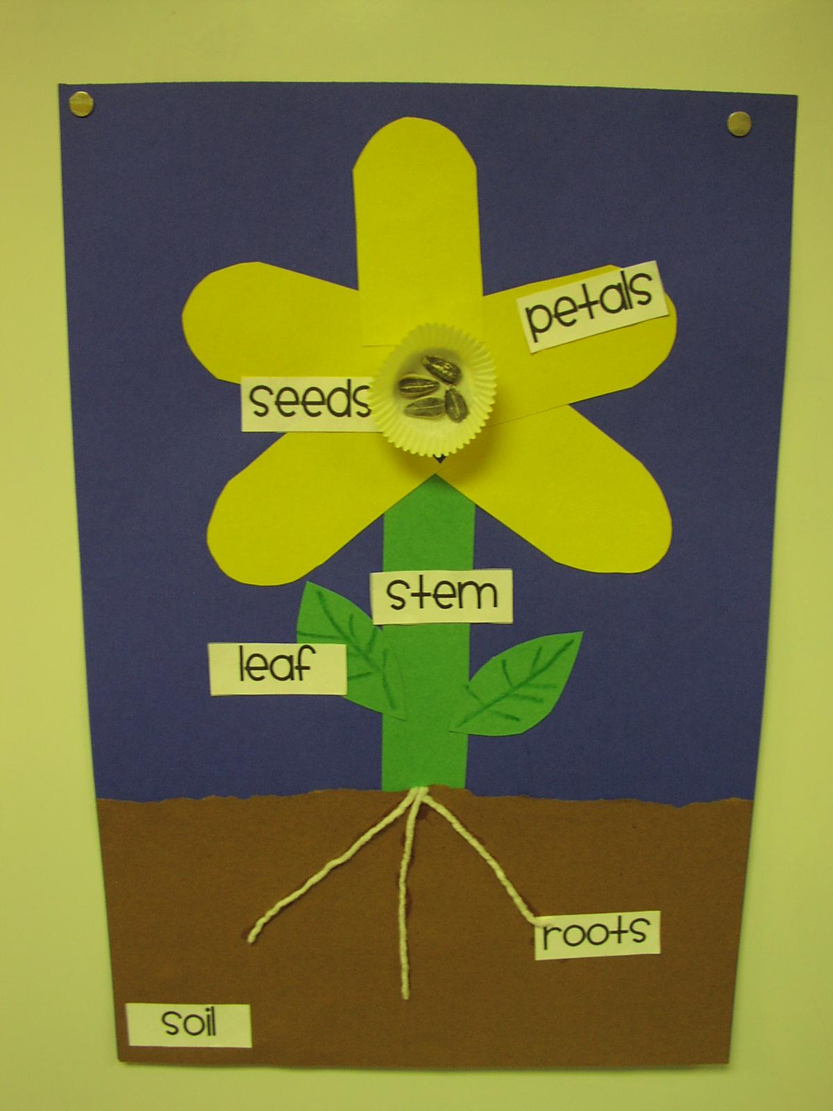 Keen Kindergarten Spring is here