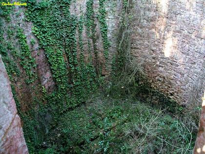 Interior del Pou de Glaç del Prat de Dalt. Autor: Carlos Albacete