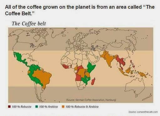 imagen que nos enseña el área de cultivo del café