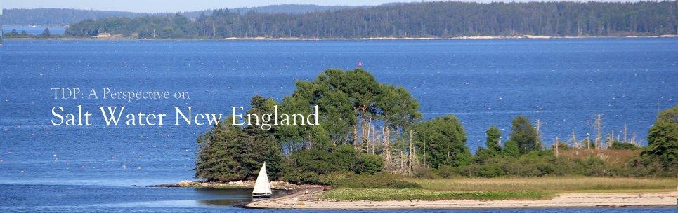 Salt Water New England