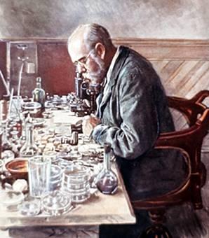Robert koch y la tuberculosis for Koch hermann