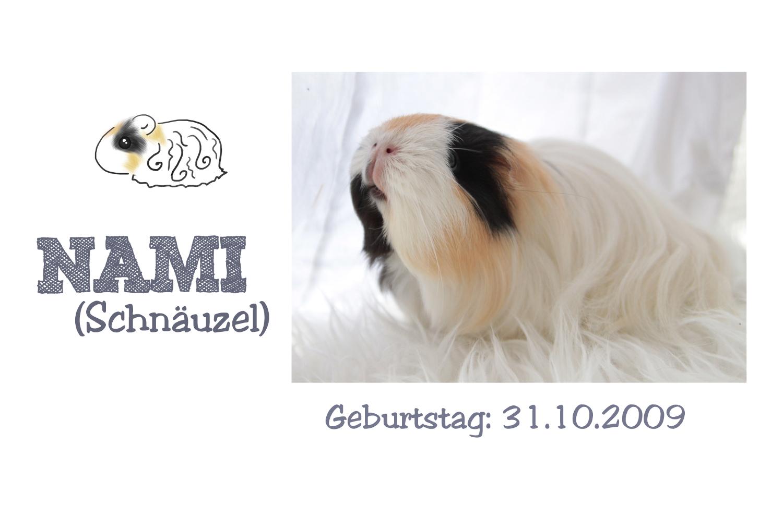 http://wutzdoc.blogspot.de/2013/09/nami.html