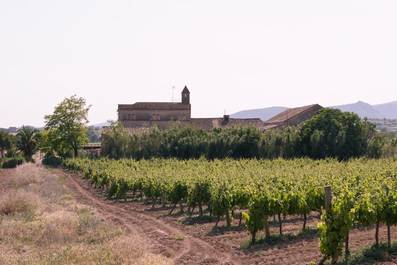 Vilafranca del Penedes Spain  city photos gallery : ... at 01 15 tags barcelona country houses penedès rural spain spain