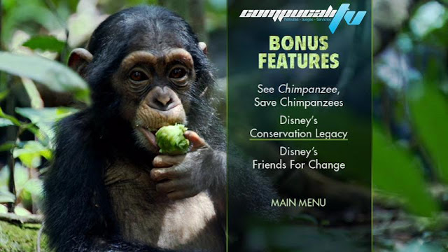 Chimpancés DVDR NTSC Español Latino Descargar 2012 Documental