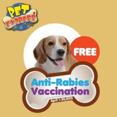 When Do Puppies Get Their Rabies Shot Essence Promo