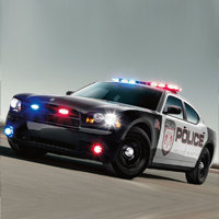 Polis Araba Parkı