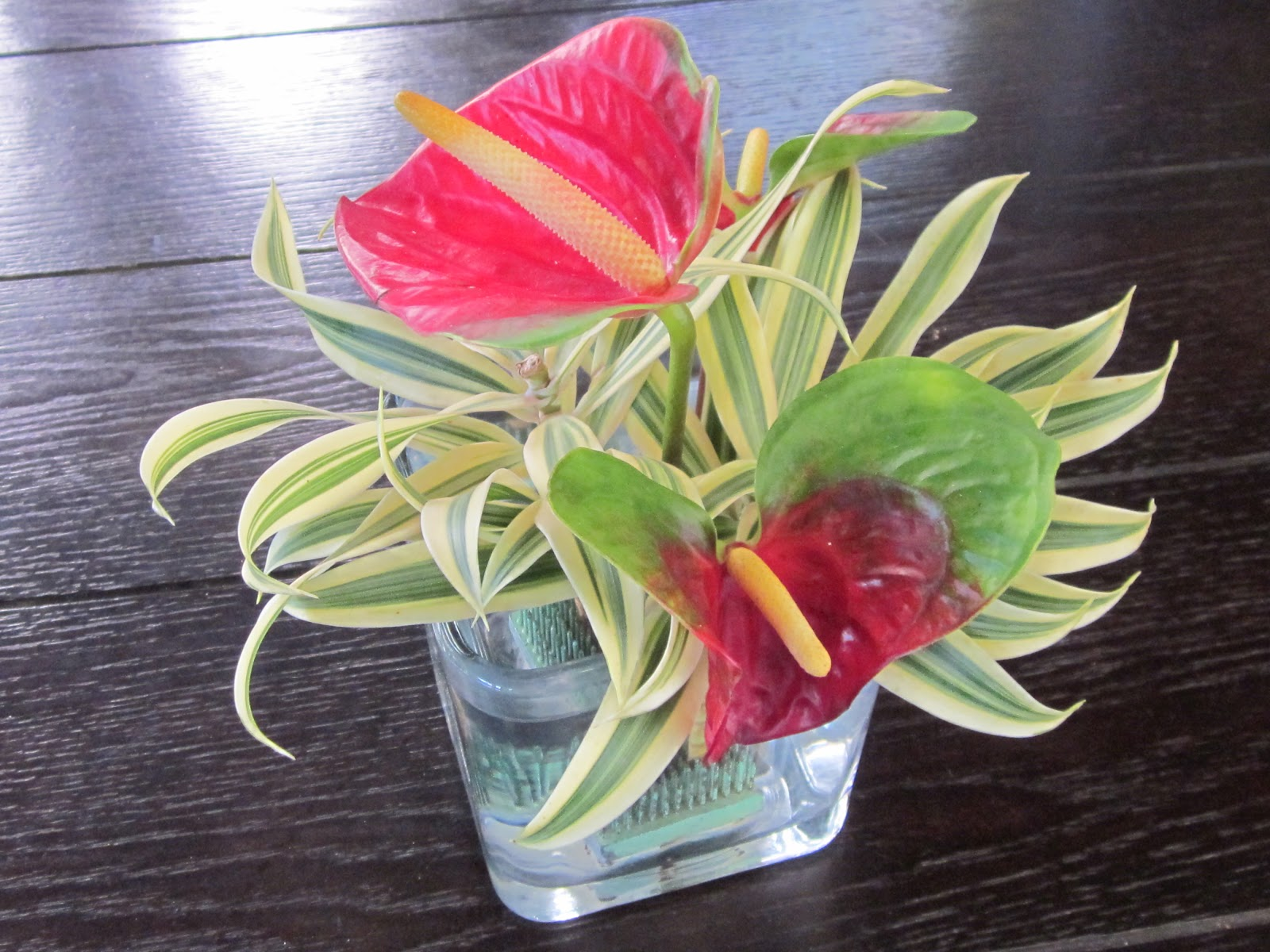 Orchids and ikebana october