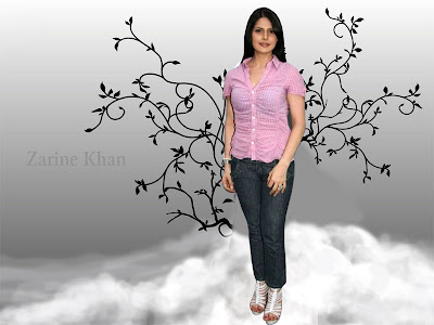 Zarine Khan Beautiful Wallpapers 2012
