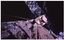 Vídeo: Ascensió al Totem Pole. Tasmània