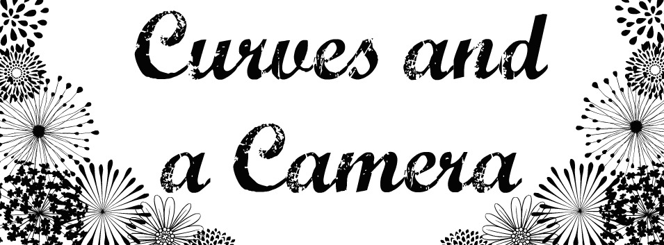 Curves and a Camera