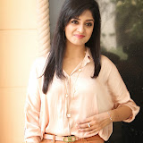 Vimala Raman Latest Photos in Jeans at Trendz Life Style Expo 2014 Inauguration 007