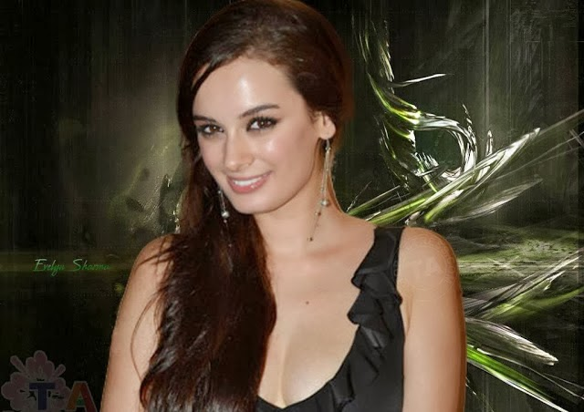Evelyn+Sharma+Hd+Wallpapers+Free+Download015