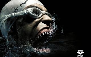 Sharks Face