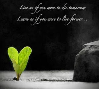 life quotes wallpapers