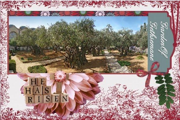 lo 2 - March 2016 - Garden of Gethsemane