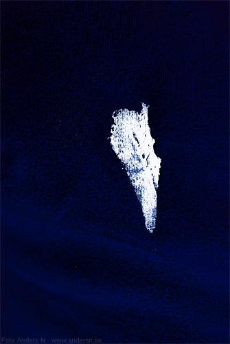 måsen, seagull, fågelskit, måsskit, filmjölk, vit färg, blå bakgrund tröja, white on blue, foto anders n