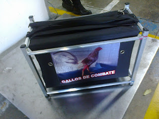 venta de cunas para gallos finos, envios a colombia y exterior, los mejores gallos de pelea, cunas de varios tipos para enviar gallos finos, pollos criadero