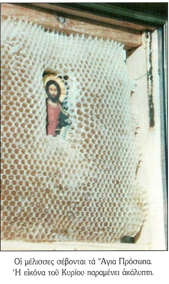 [Image: bees+christ.jpg]
