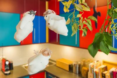 Harald Maier -  KM-Küchenmodernisierung München GmbH. Küche neu gestalten mit farbigen Fronten - für ein inspirierendes Ambiente genau richtig!
