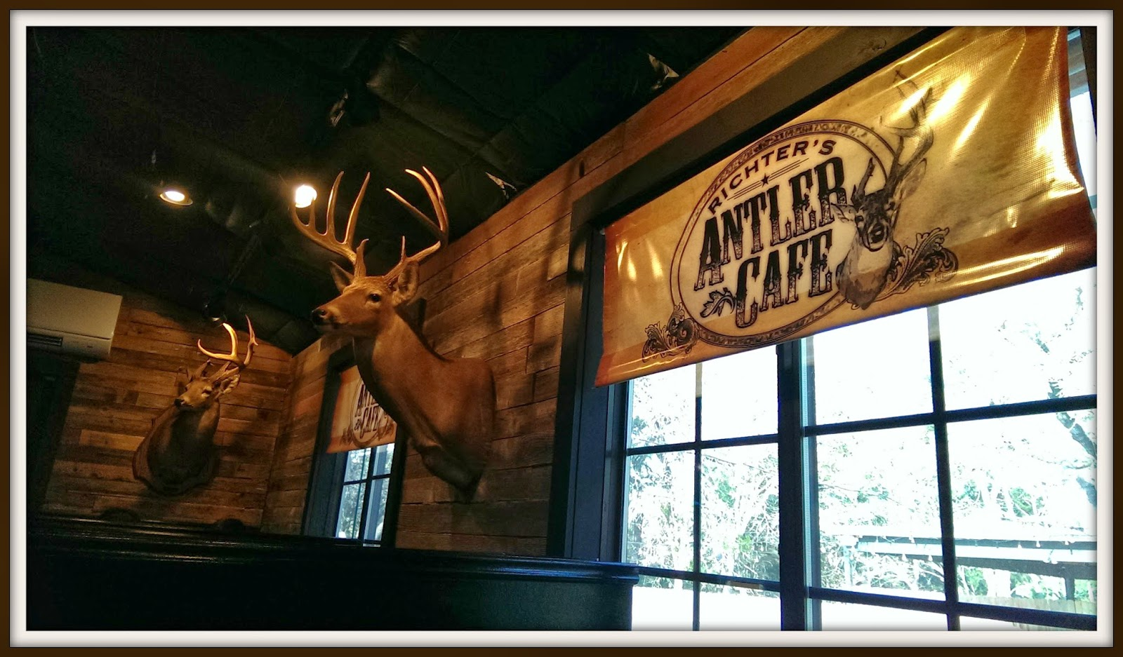 house of fauci u0027s richter u0027s antler cafe house of fauci