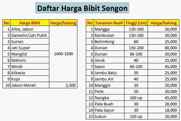 Estimasi Daftar Harga Jual Bibit Kayu