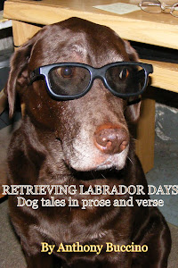 Dog Tales in Prose and Verse