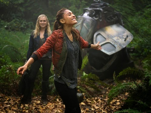 The 100 Raven