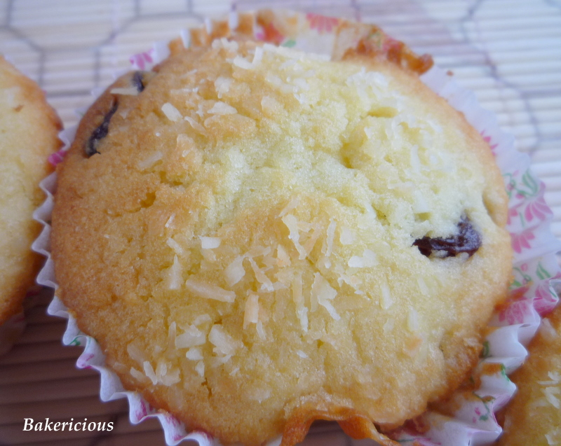 when i 1st saw these coconut cupcakes from 鲸鱼蓝蓝小窝居 i ...