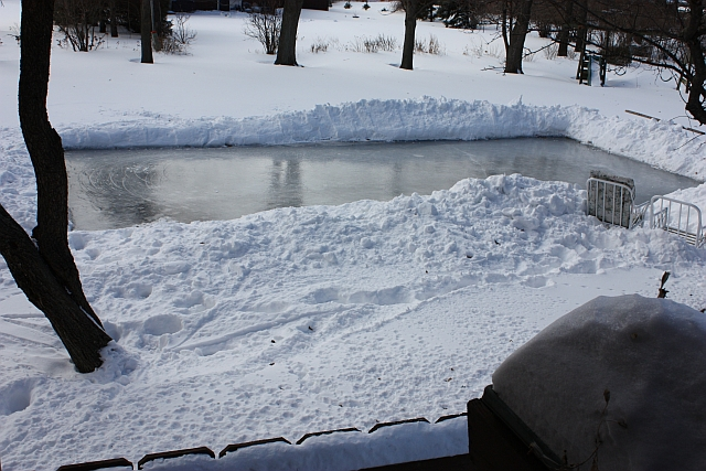 This year's backyard ice rink project was proceeded by what I call marital  moments. These moments are sometimes precipitated by one spouse starting a  ... - Mutiny In The Garden: Do Backyard Ice Rinks Kill The Grass? Nope