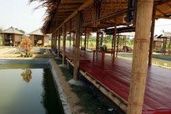 kolam Lesehan
