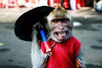Topeng Monyet-Sarimin