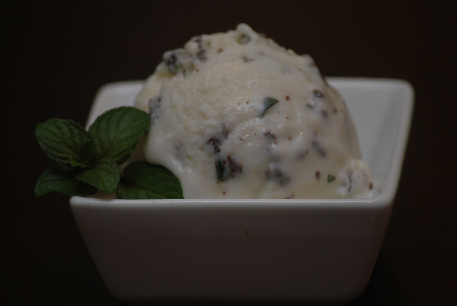 My story in recipes: Mint Chocolate Chip Frozen Yogurt