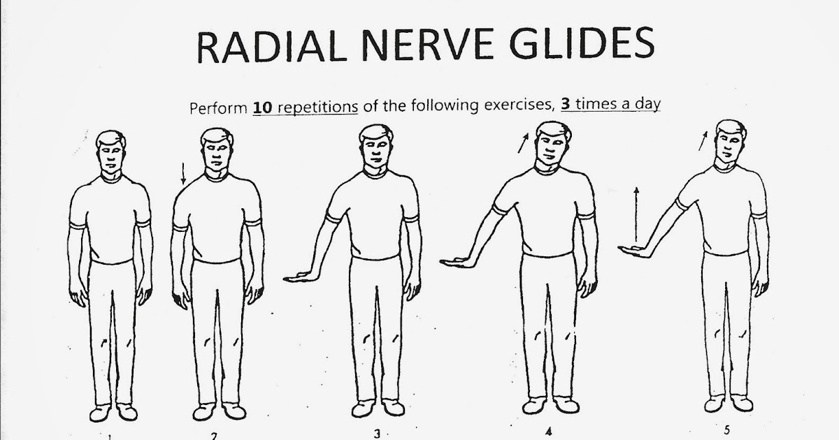 nerve and tendon gliding exercises health and social care essay Free human anatomy and physiology practice tests with advanced bones, organs, connective tissues, nerves  and tendon injuries and disorders practice.