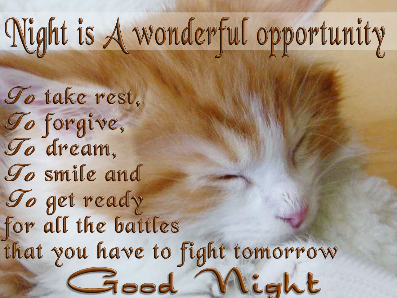 Hd Wallpaper Graphic Good Night Greetings Quotes Wishes Hd