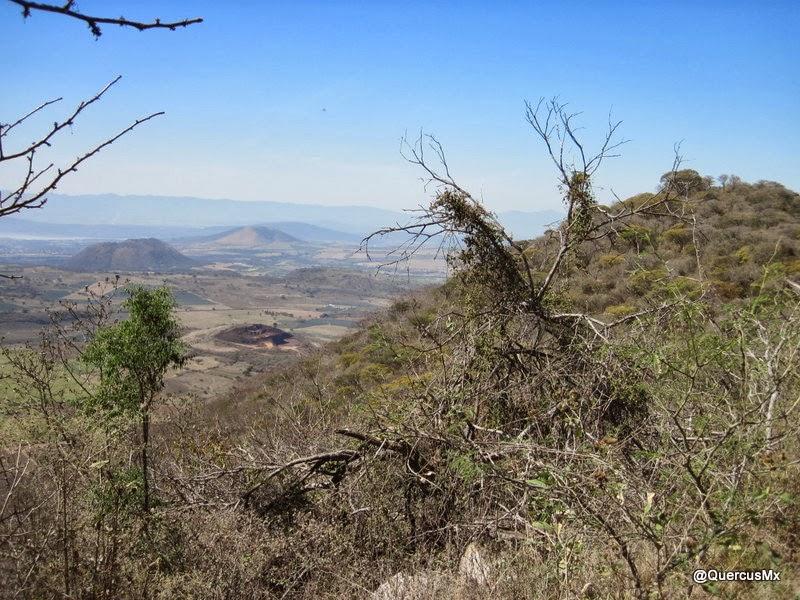 En la cima del Cerro de Mazatepec