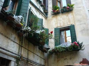 Cieniowanie roślin na balkonie – agrowłóknina na upały