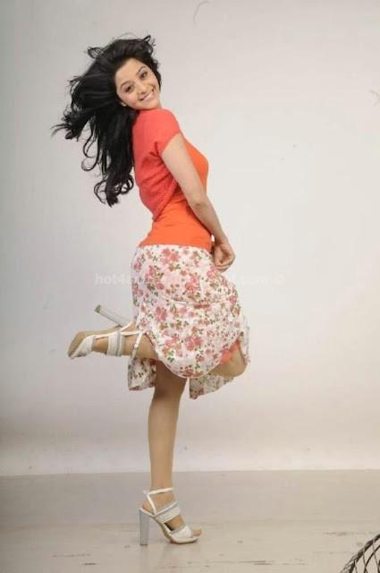 Vedika hot photos gallery