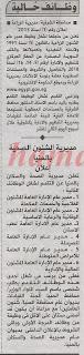 ����� ����� ������� ������� ����� �������� 27/11/2013 الاهرام.jpg