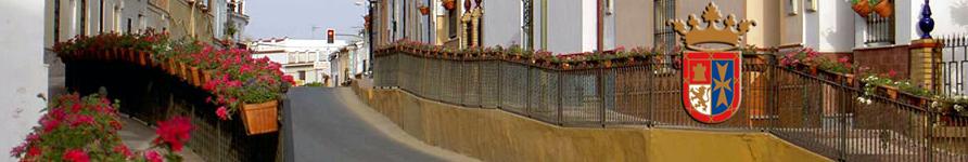 www.espartinas.net