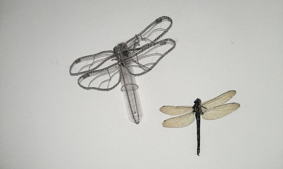 Fantastisch Insekten Aus Kupferdraht Galerie - Die Besten ...
