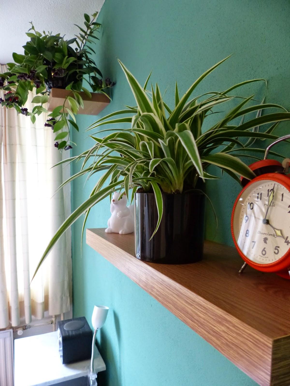 Sendsomeloveblog: .... en van roze naar groen! (en uitslag prijsvraag)