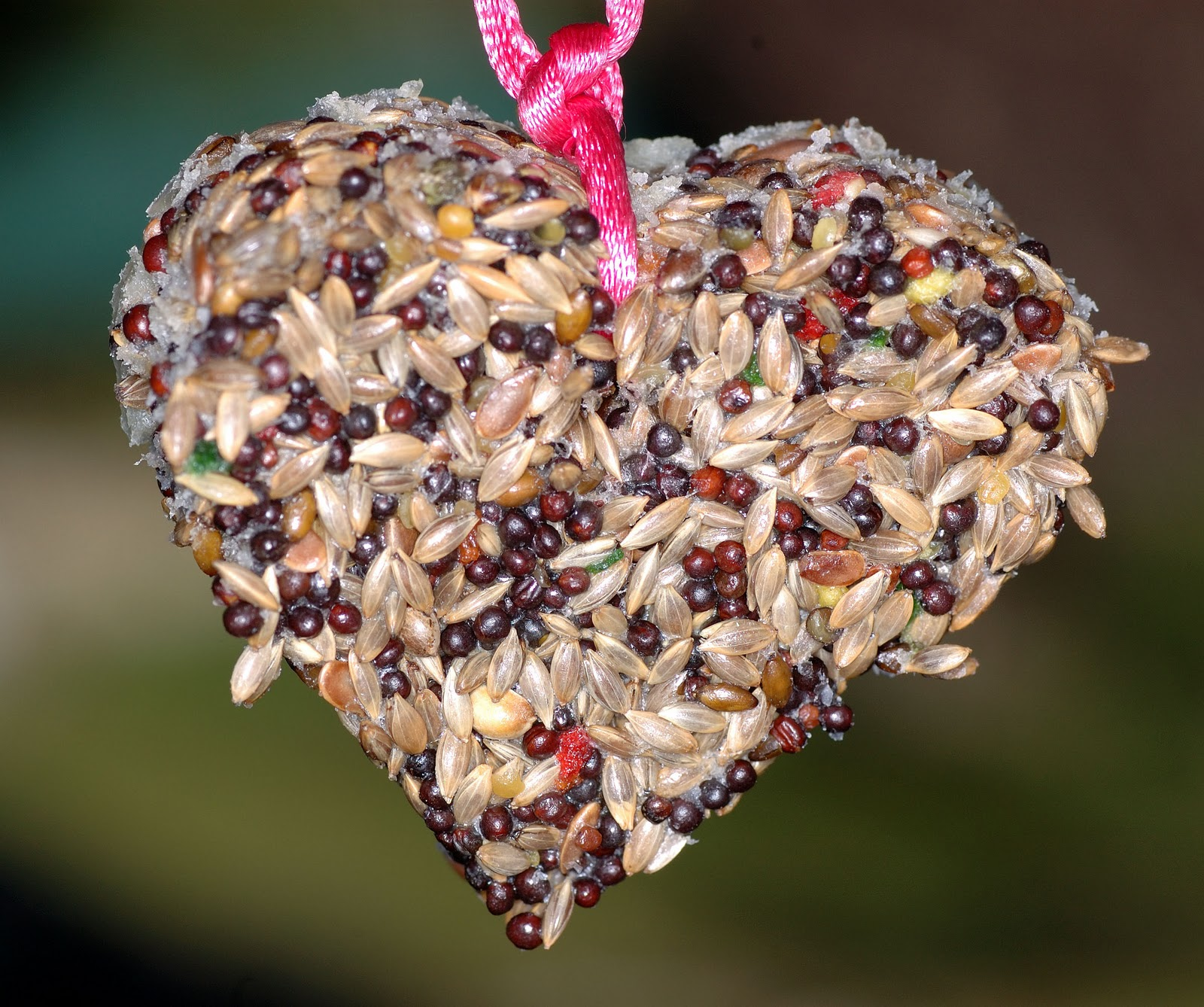 El taller de pepa comederos para aves for Bebederos para aves jardin