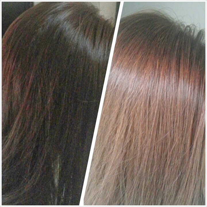 Lyn S Blogalicious Diy Hair Color Reviews Loreal Phyto