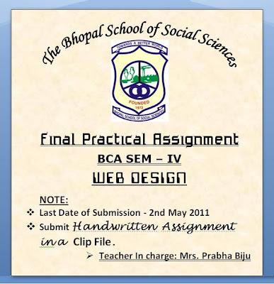 Final Practical Assignment - Web Design