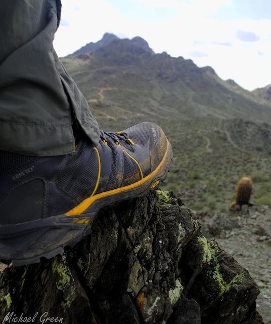 Mammut T Aenergy GTX boots