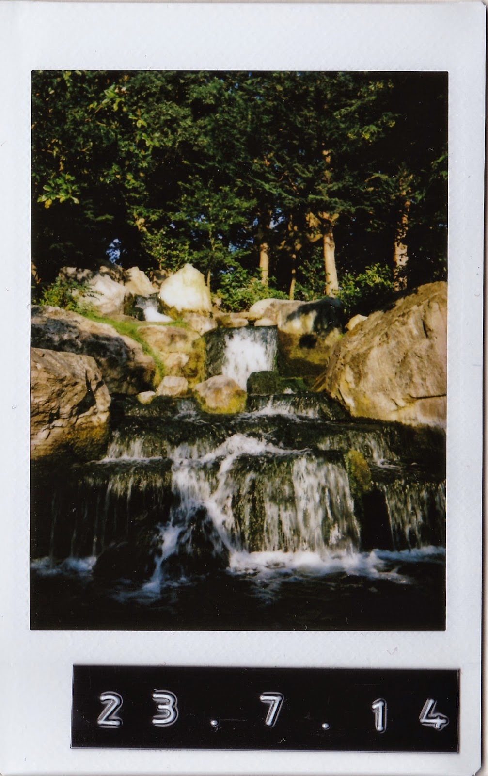 Polaroid of japanese garden