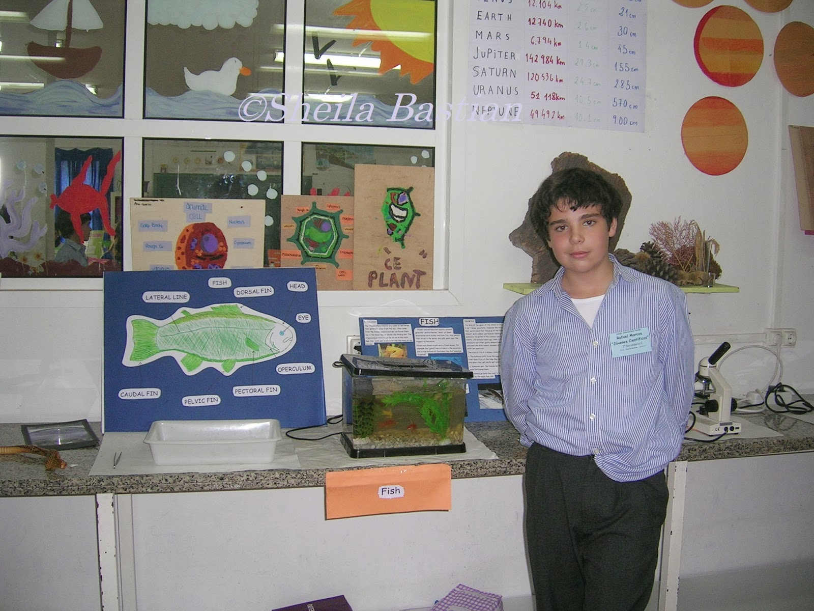 Science magazine science fair project fish by rafael for Fishing science fair projects