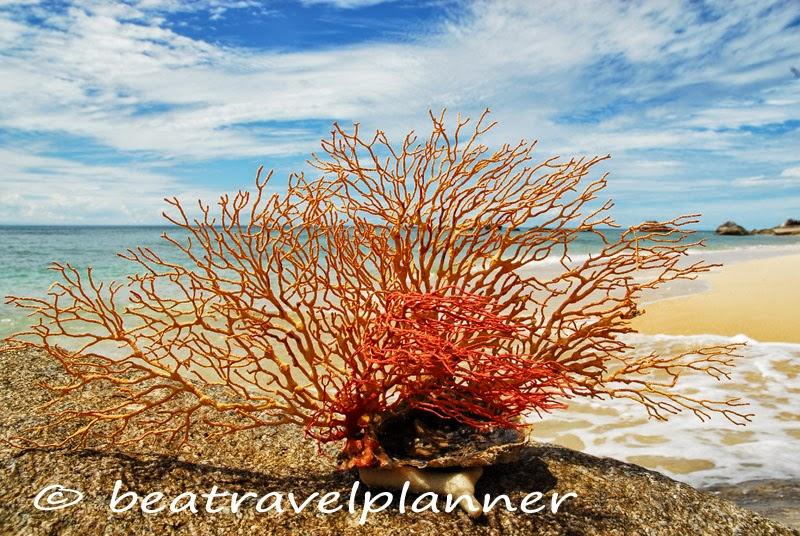 Isola Tioman - Malaysia