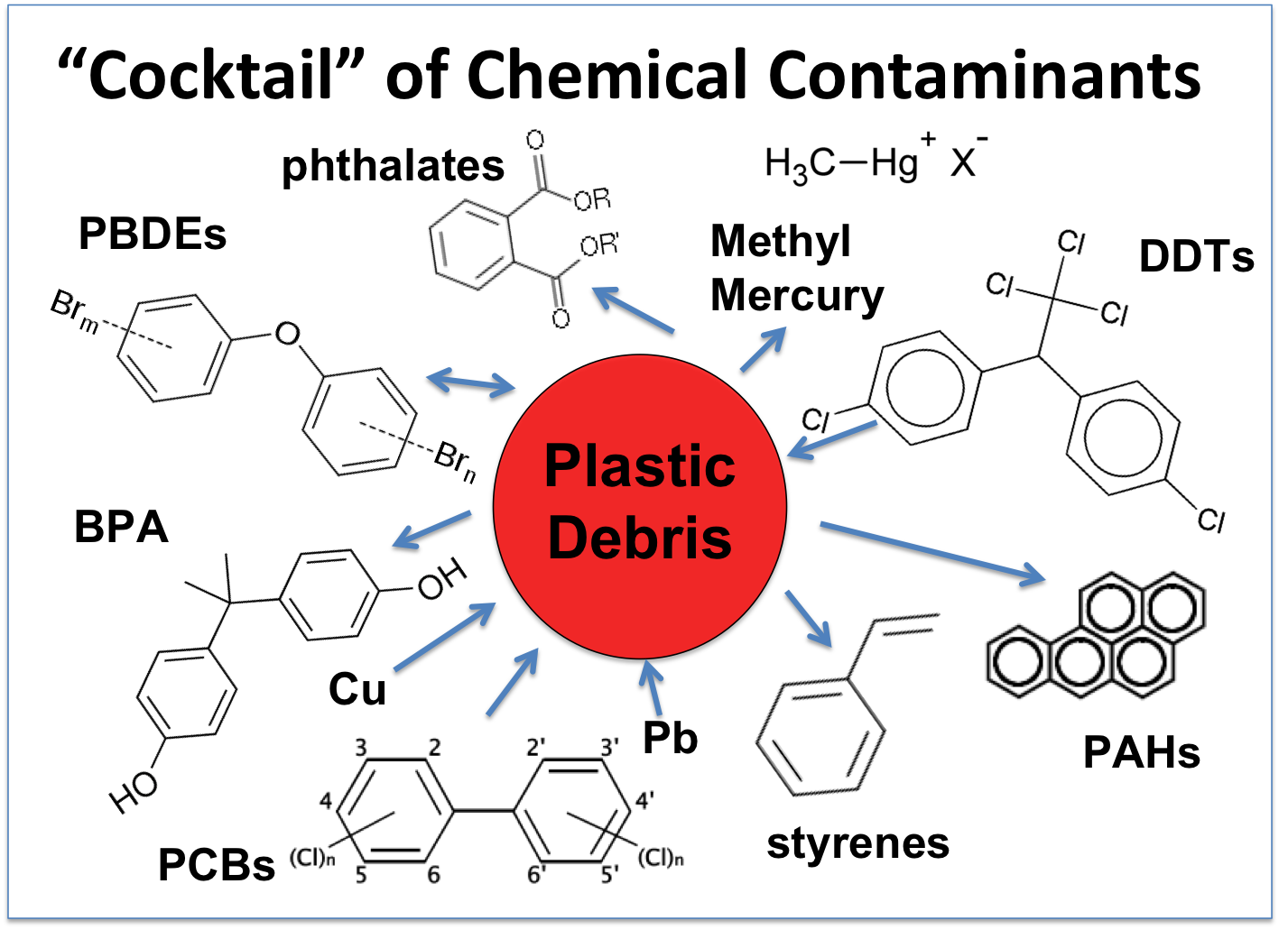 is life in plastic really fantastic toxic chemicals
