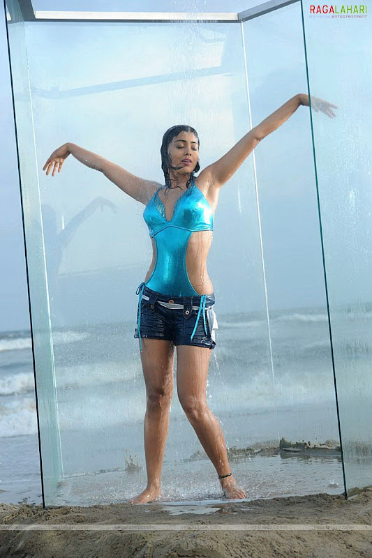 SHRIYA SARAN Hot Pose With Her Lovely Looks unseen pics